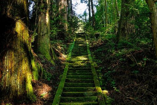 神社に続く階段